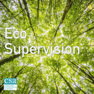 Eco-Supervision Group, London Picture