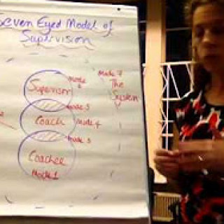 The Seven Eyed Model of Supervision in a Video Nutshell Picture